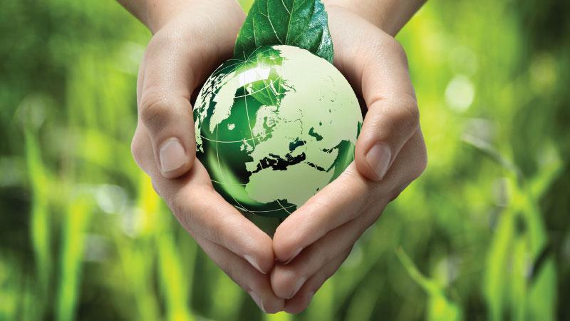 Servicio: Medio Ambiente · RE & Asociados